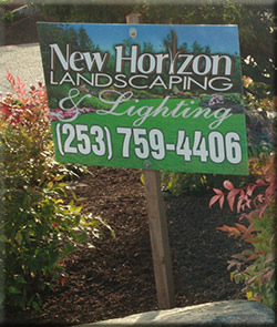 New Horizon Services